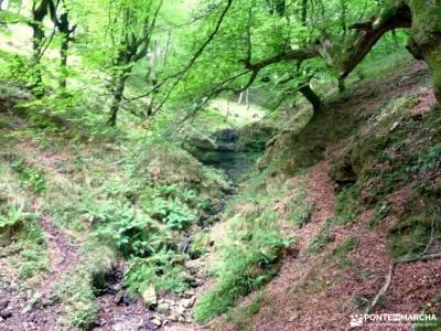 Senderismo Valles Pasiegos, Cantabria; el valle del jerte en flor viajes en julio rutas en cercedill